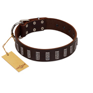 """Brown Lace"" Handmade FDT Artisan Leather Dog Collar for Everyday Walks"
