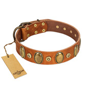 """Crystal Sand"" FDT Artisan Tan Leather Collar with Vintage Looking Oval and Round Studs"