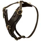 Fashion Dog Harness with Optional Handle for Dog Training and Walking