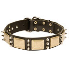 40% DISCOUNT Custom Leather Dog Collar with Sparkling Spikes and Old-looking Plates