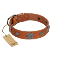 """Foxy Nature"" FDT Artisan Tan Leather Dog Collar with Chrome Plated Brooches"