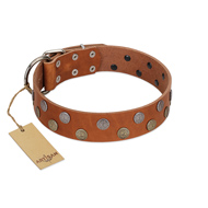 """Ancient Symbol"" Trendy FDT Artisan Tan Leather Dog Collar with Silver- and Gold-Like Studs"
