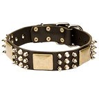 Dog Leather Collar with Old Brass Plates, Nickel Spikes and Pyramids 40% DISCOUNT