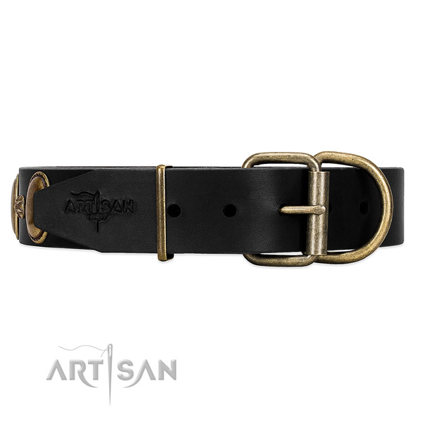 Adjustable Leather Dog Collar of Incredible Quality