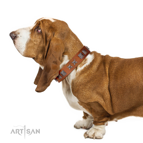 Walking top-notch quality walking leather Basset Hound