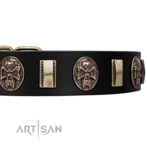 Fancy Walking Leather Dog Collar with Plates and Medallions