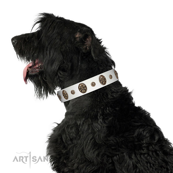 Wonderful Black Russian Terrier Artisan leather collar