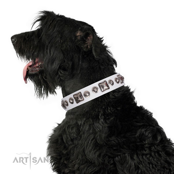 Black Russian Terrier stunning genuine leather dog collar with adornments