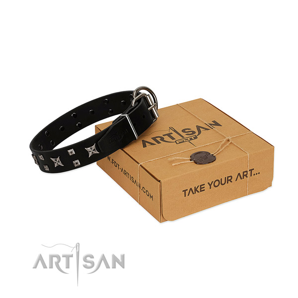 FDT Artisan leather dog collar for good control