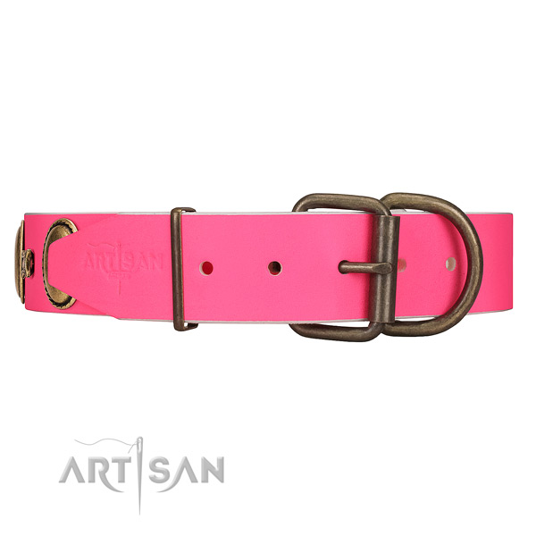Leather dog collar with old bronze-like hardware