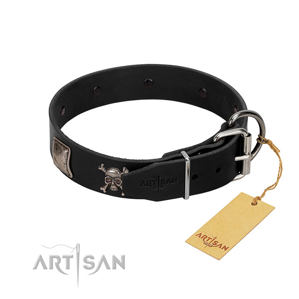 Designer Dog Collar Equipped with Rustproof Hardware