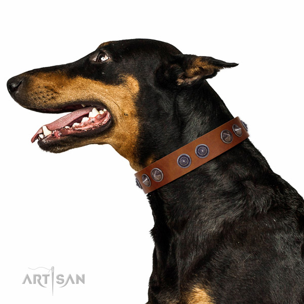 Walking top-notch quality walking leather Doberman