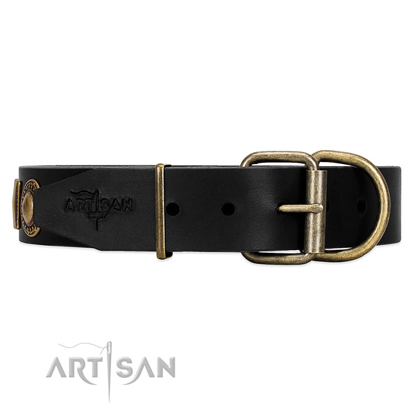 Black dog collar with old bronze-like hardware