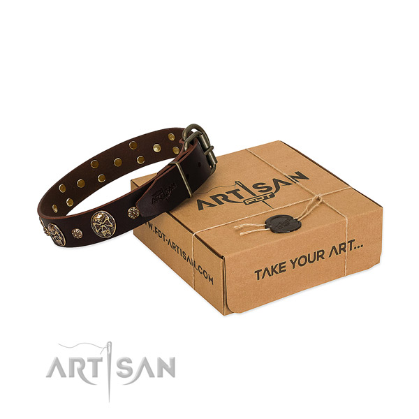 Brown Leather dog collar for daily walking
