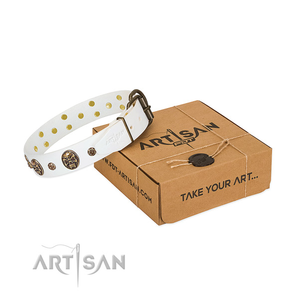 White leather dog collar for bright personalities