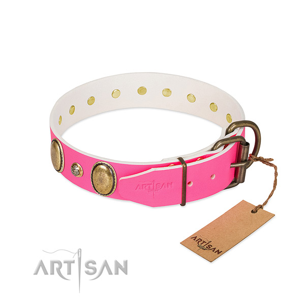 Premium quality Artisan dog collar for daily wear
