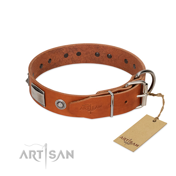 Tan Leather Dog Collar with Riveted Rustles Fittings