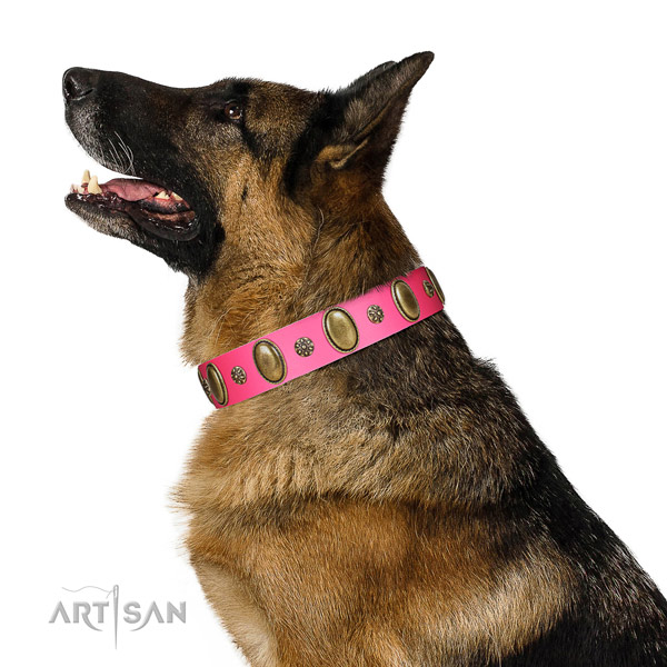 Reliable German Shepherd leather collar for walking