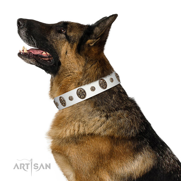 Premium quality German Shepherd Artisan leather collar