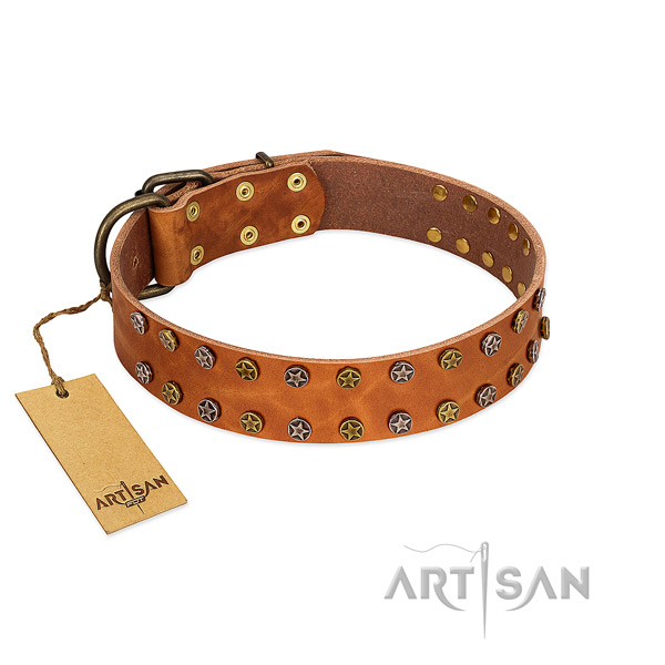 Original Design Leather Dog Collar with Stars