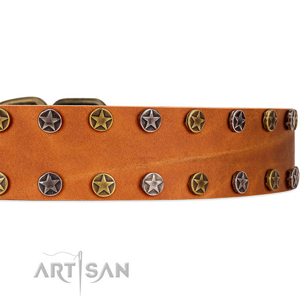 Perfectly Oiled Tan Leather Dog Collar with Stars