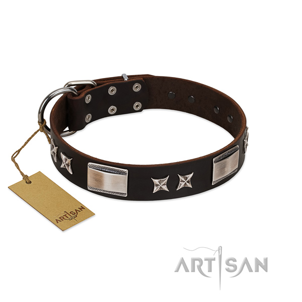 Best walking genuine leather dog collar with stars and plates