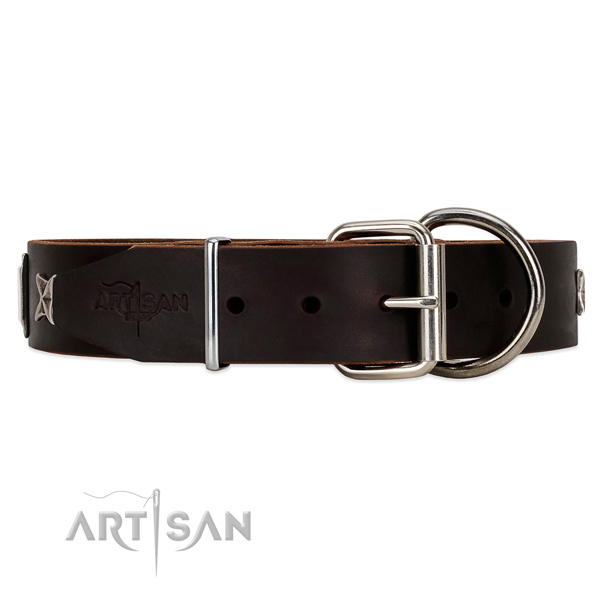 Brown leather dog collar with chrome plated