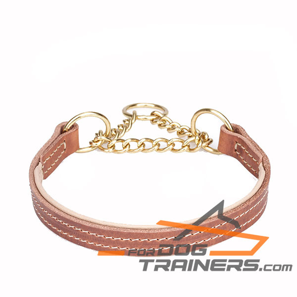 Padded with Nappa Leather Martingale Dog Collar