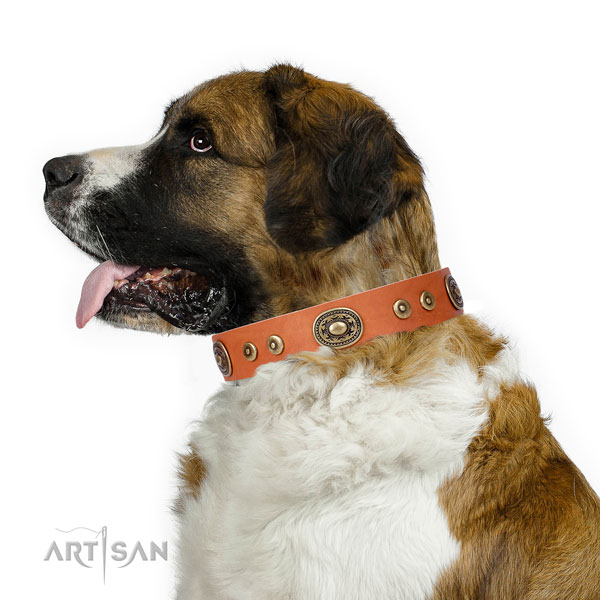 Moscow Watchdog amazing full grain genuine leather dog collar with decorations