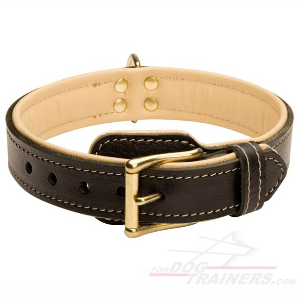 Padded Leather Collar