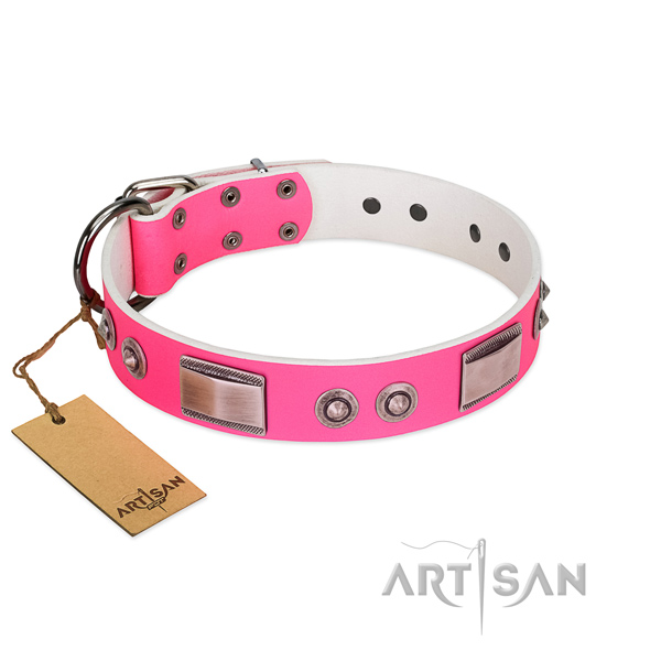 Pink dog collar for comfortable daily walks