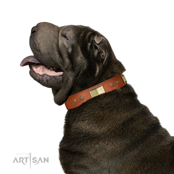Shar Pei handy use dog collar of comfortable genuine leather