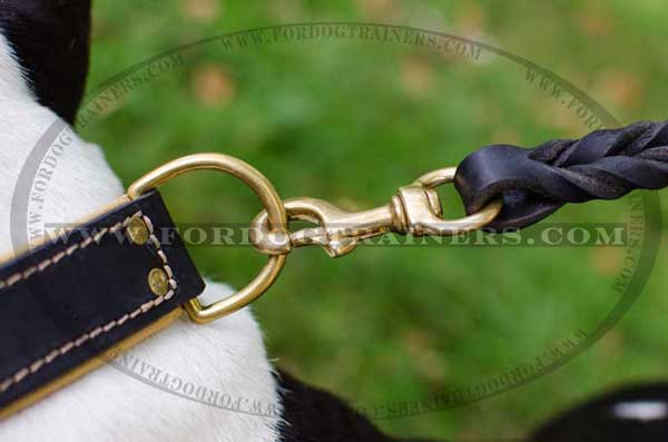 Reliable Brass D-Ring on Leather Dog Collar for Walking