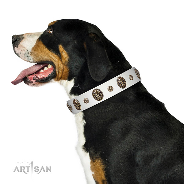 Walking leather Swiss Mountain Dog collar for everyday