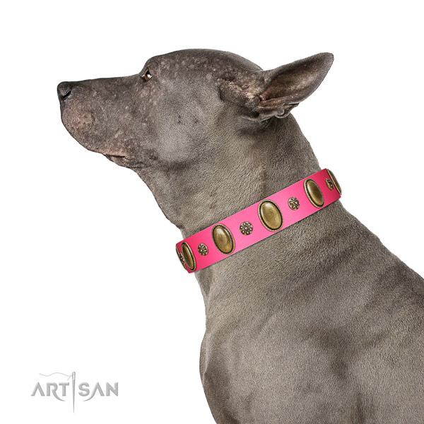 Super comfortable Thai Ridgeback Artisan leather collar