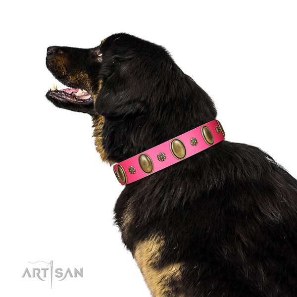 Pink Tibetian Mastiff Artisan leather collar for elegant