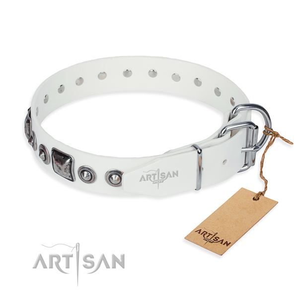 White leather dog collar with rustless fittings