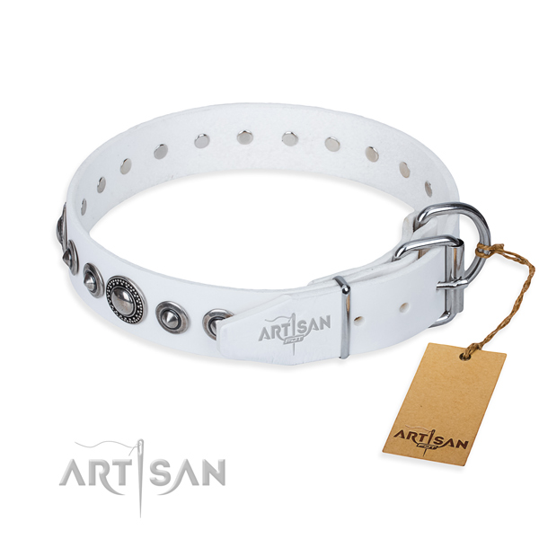 White leather dog collar with chrome plated buckle and D-ring