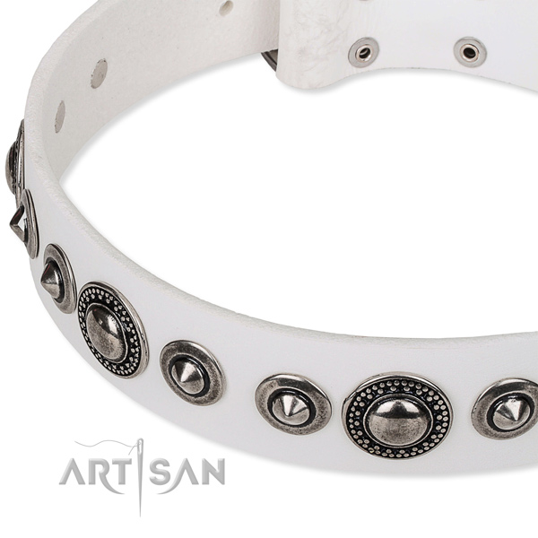 Riveted white leather dog collar