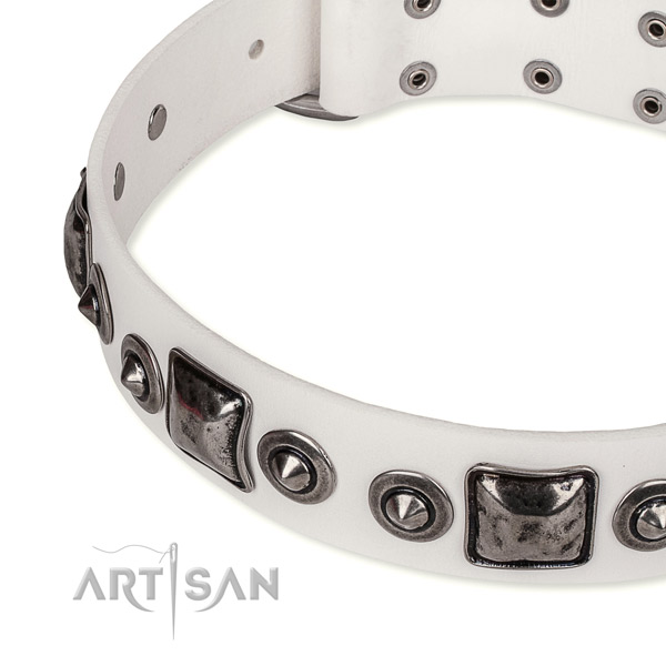 White leather dog collar durable in use