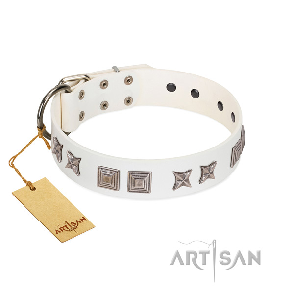 Natural leather dog collar with stylish adornments