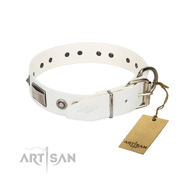 Comfortable leather dog collar with polished edges