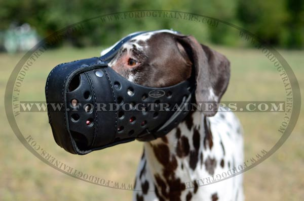 Adjustable Hard Leather Muzzle for Training and Walking