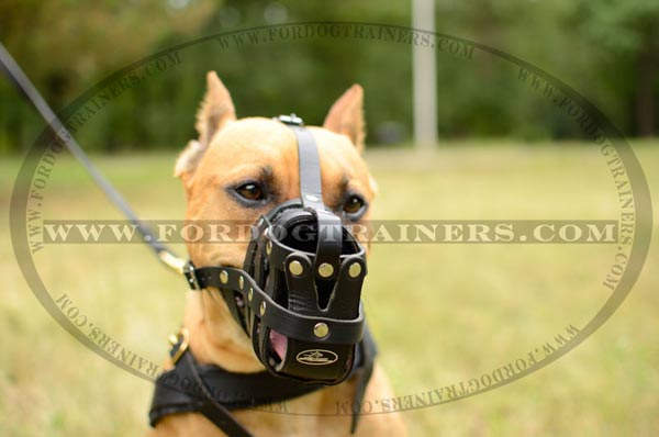 Well-ventilated Leather Dog Muzzle with Adjustable Straps