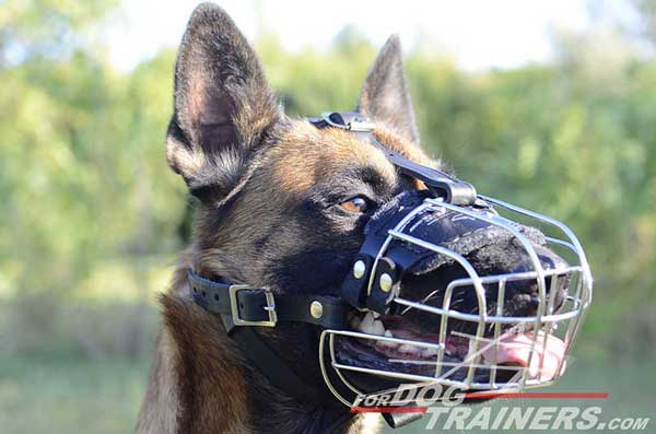 Well-Ventilated Metal Dog Muzzle