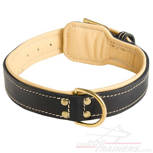 Royal Nappa Padded Handmade Leather Dog Collar for Fashion Walking - Click Image to Close