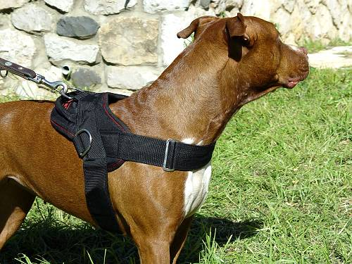 Dog Nylon Harness for Pulling, Tracking, Training and Daily Walking